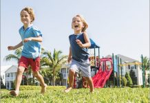 Bug Free Tampa Bay area lawns