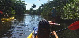 Weekender: Paddle Into Paradise