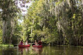Ritz Carlton Orlando canoeing