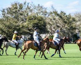 Sponsored Event: Charity Polo Classic